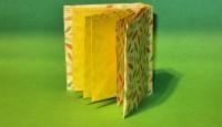 Origami Livro David Brill