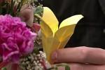 Neal Caffrey recebe uma mensagem através de um origami