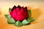 Origami Flor de Lótus