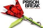 prison_break_origami