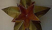 Origami Dimensional Star